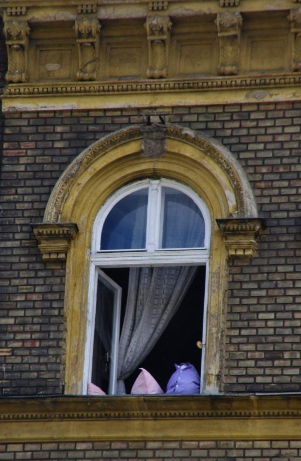 Oreillers à la fenêtre
