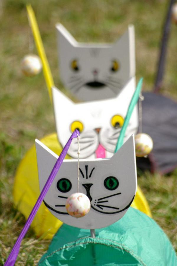 De drôles de chats -2-