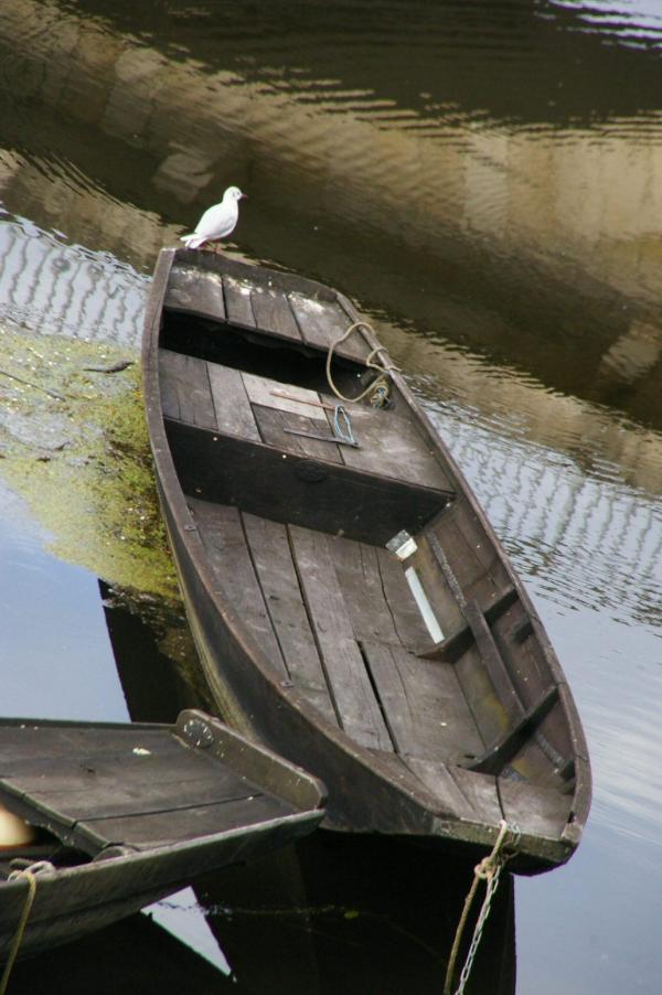 Barque sur la Vienne