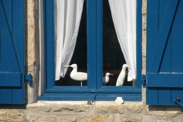 La fenêtre aux mouettes