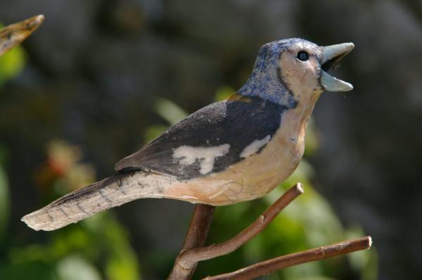 Charmants oiseaux, 2