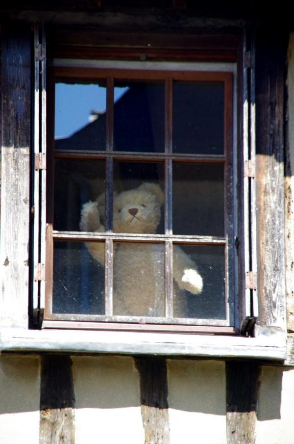 Coucou à la fenêtre