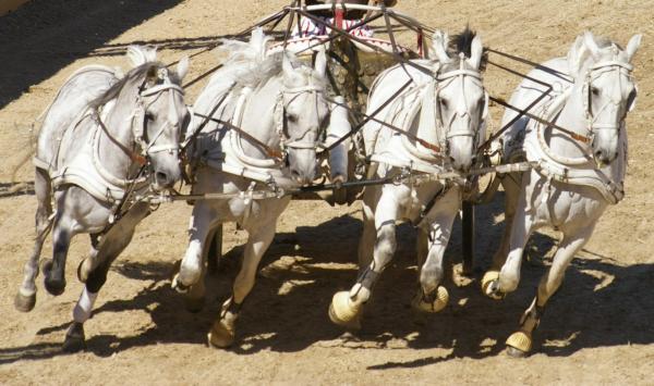Quadrige de chevaux blancs