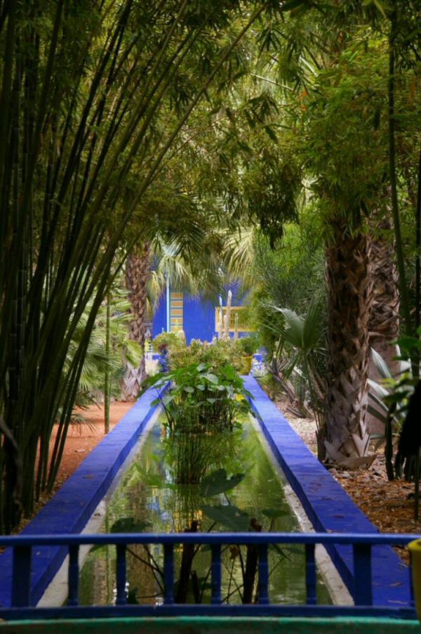 1000 images about jardin majorelle on pinterest for Jardin majorelle