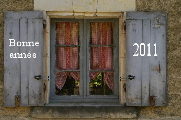 Tous mes meilleurs vœux pour 2011 !