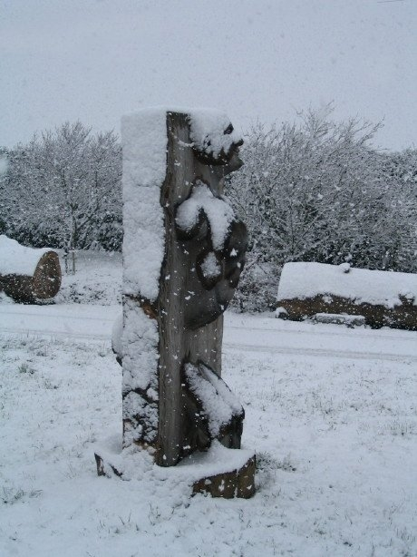 Sous la neige (11)