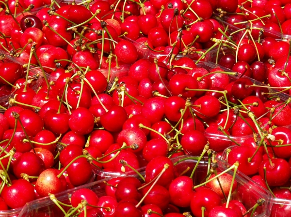 fruits en image Medium_cerises