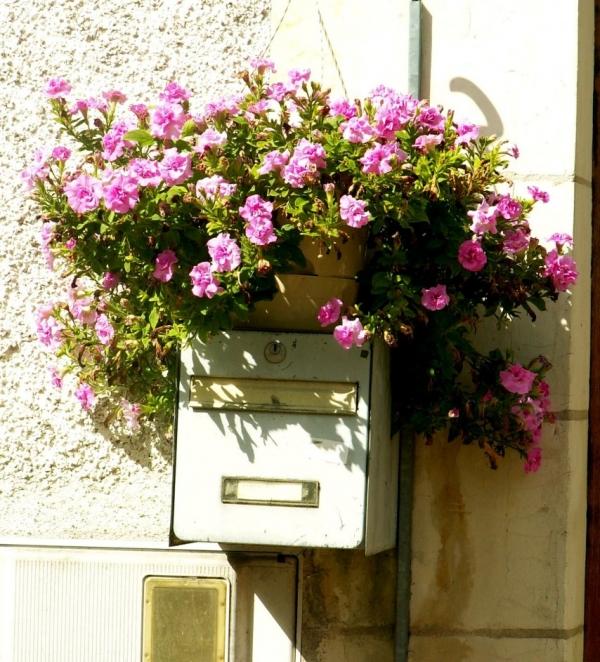 Crissay-sur-Manse (12)