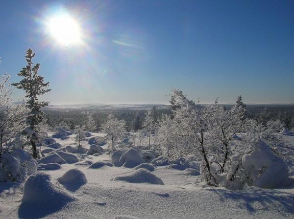Bienvenue dans le grand nord (1)