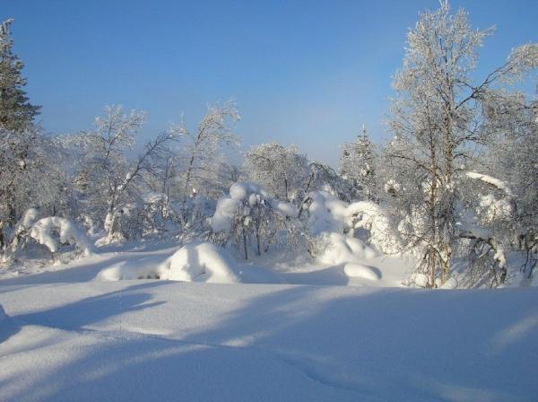 Bienvenue dans le grand Nord (3)