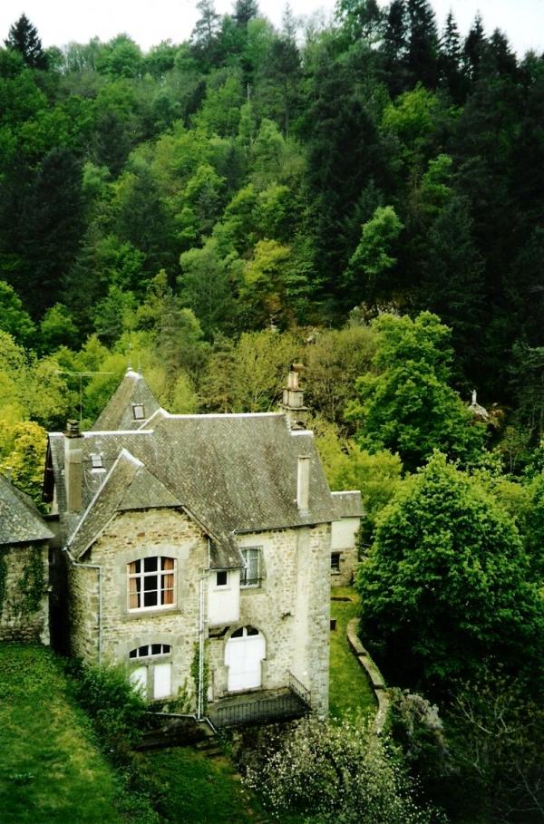 La petite maison dans la forêt