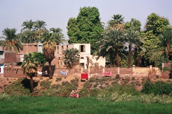 Les rives du Nil (8)