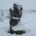 Sous la neige (12)