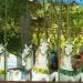 Chevaux de bois (1)