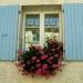 Fenêtres fleuries (2)