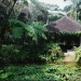Le jardin de Balata (2)