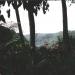 Le jardin de Balata (12)