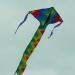 Cerf-volant (9)