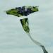 Cerf-volant (12)