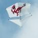 Cerf-volant (4)