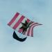 Cerf-volant (5)
