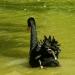 Le cygne noir (2)