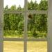 Papillon à la fenêtre
