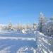 Bienvenue dans le grand Nord (4)