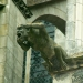 Les gargouilles de la cathédrale (2)