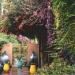 Le jardin Majorelle (1)