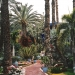 Le jardin Majorelle (5)