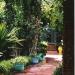 Le jardin Majorelle (7)
