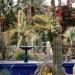 Le jardin Majorelle (9)