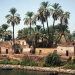 Les rives du Nil (12)