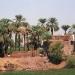 Les rives du Nil (11)