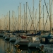 Le port de Piriac (5)