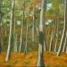 Sous-bois en forêt de Chinon
