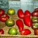 Tomates (2)