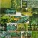 Vert (1)