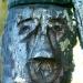 Quand les branches deviennent visages (2)
