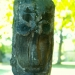 Quand les branches deviennent visages (6)